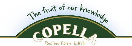 Copella, Boxford Farm, Suffolk